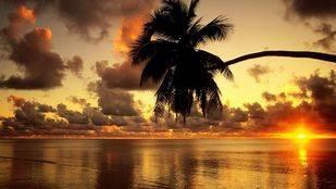 Islas Cook, un lugar para aventureros gastronómicos
