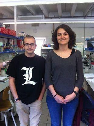 Los expertos Francesc Cebrià y Sara Barberàn, del Departamento de Genética, Microbiología y Estadística y del Instituto de Biomedicina de la UB (IBUB)
