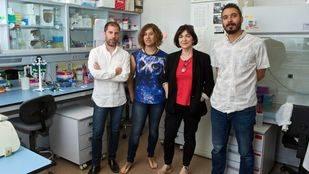 Investigadores de la Universidad de Alicante participan en el proyecto europeo METAFLUIDICS