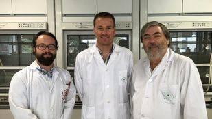 Científicos de la UGR introducen iones metálicos en el interior de moléculas de ADN