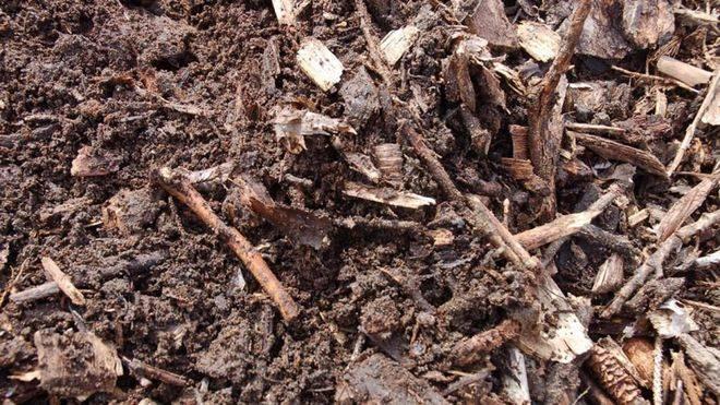 La UMH participa en el desarrollo de un método innovador para la remediación de suelos contaminados con cromo