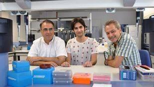 Un estudio evalúa la efectividad de los fármacos para Hepatitis C causada por diferentes genotipos del virus