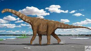 Lohuecotitan pandafilandi, nuevo dinosaurio del Cretácico Superior de Cuenca