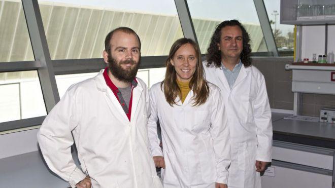 Nanopartículas magnéticas para el tratamiento de aguas contaminadas