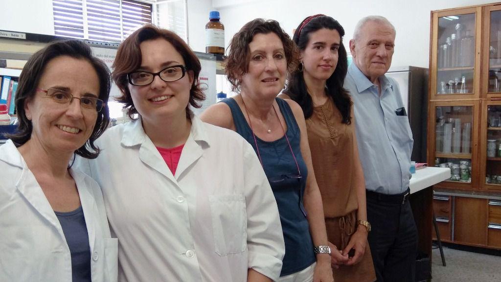 Identifican una proteína clave en el correcto funcionamiento del hígado