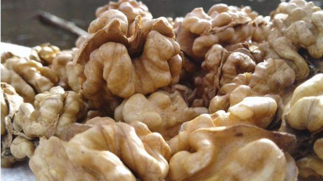 Consumir nueces reduce las concentraciones sanguíneas de colesterol y triglicéridos