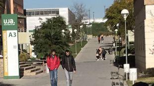 Ayudas de la UJA para la creación de empleo entre entudiantes y titulados