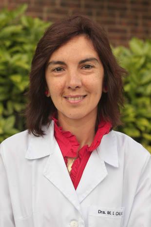 María Isabel Calvo, Directora de máster